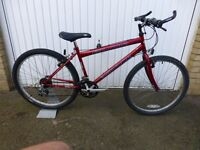 Falcon Warrior cycle / bike. Very good condition. Shimano gears