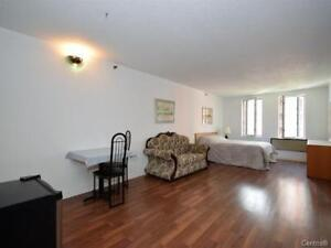 Downtown Loft style apartment, heated and furnished.