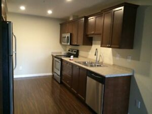 Amazing deal! Furnished 1 bedroom and a den condo in Stonebridge