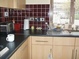 2 bed semi det. council house in Hemel Hempstead Herts for house,bungalow or flat in Colchester