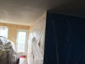 excellent quality plastering ,painting, tiles flooring St. John's Newfoundland image 3