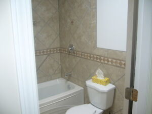 Bathroom Restorations Prince George British Columbia image 1