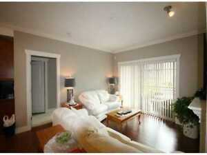 $1850 2BR 2Bath + Den Condo for Rent WHITE ROCK/SOUTH SURREY