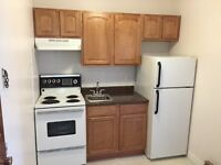 NEW RENO DOWNTOWN BACHELOR PAD $495