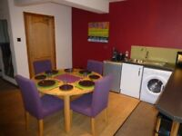 Luxury Studio Apartment with Sauna and Large screen cinema for short-term work/corporate let