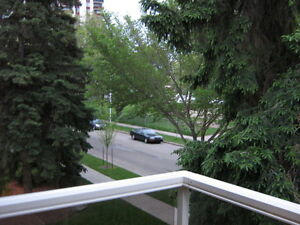 Strathcona Spacious 1 Bedroom