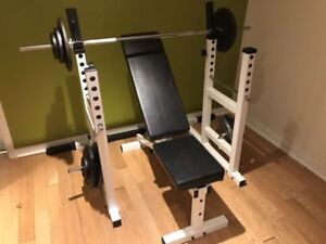 York Squat Rack, Safety Spotters, Bench, Leg Ext, Weights, Bar