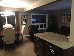 3 Bedroom Detached Home for Rent $1500 Cambridge Kitchener Area image 7