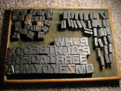 Lg. Group 100 1116 1 Antique Wood Letterpress Print Type Letters Numbers