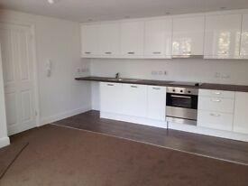 Lovely 1 Bedroom Apartment with Terrace Close to Royal Gwent Hospital and City Centre - Newport
