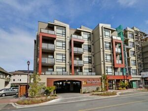 Two Bedroom Two Bath Apartment in Langford