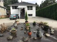 North Shore - Pemberton Heights (North Vancouver)- quiet and ser