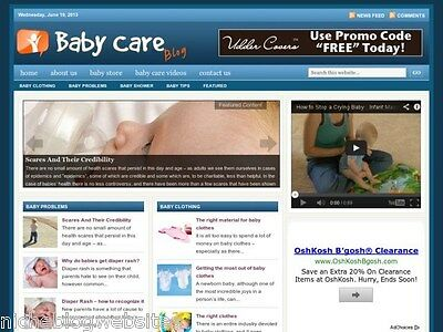 Hot Baby Care Newborn Health Tips Niche Blog Website For Sale