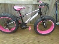 bulk sonic chids bike