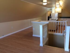 Bachelor Apartment OR office space for rent