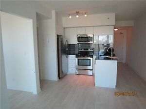 Gorgeous 1 BR Condo in Liberty Village with Parking