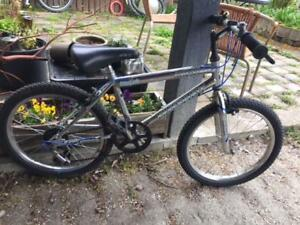 Free Spirit Super Charger Kid's Bike