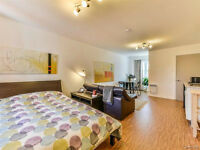 500 ft2 - A huge studio all included near metro
