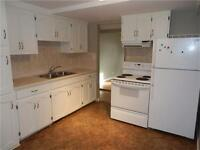 Lower level apartment for rent in Montgomery.