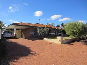 Clarkson Home,  700+sqm. Offers over $355K Clarkson Wanneroo Area Preview