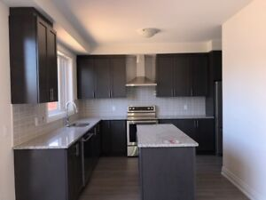 Brand New Town House for Rent in Aurora.