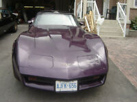 1981 Corvette in great shape
