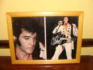 belle photo Elvis Presley, en concert
