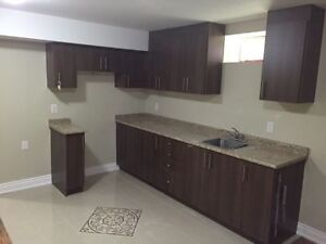 Brand new basement with 2 kitchen