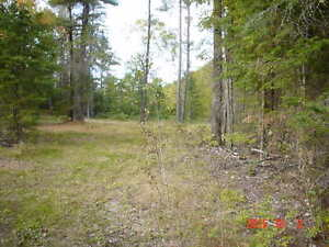 recreational property for small camp or trailer NEW PRICE !