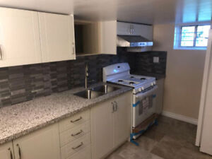 Brand New 1 Br Walk Out Bm Apartment For Rent (First Day)