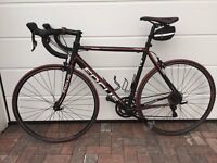 Men's Road Bike - Focus Culebro 5.0 - Excellent Condition, Recently Serviced