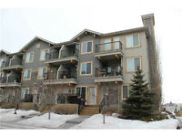 1bed 1.5bath LOFT available in McKenzie Towne