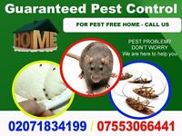 Guaranteed Pest Mice, Bedbugs & Cockroaches Control in Islington, Tottenham, Wood Green, Dalston