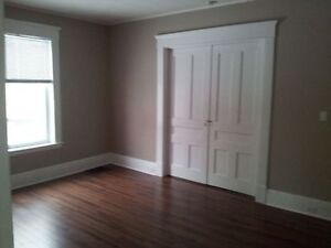 Recently renovated large 2 bedroom on trent express route