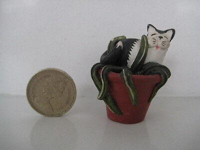RARE ORIGINAL COLOUR BOX CAT PETER FAGAN HOME SWEET HOME FLOWER POWER PLANT POT