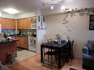 2 Bedroom Square One Mississauga Condo for Rent