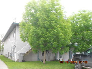 9311c 107 Ave GREAT WALKOUT BASEMENT SUITE WITH TONS OF STORAGE!