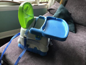 Fisher Price Booster Chair