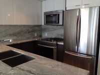 Brand new 1 bedroom river view in East Village Evolution Fuse
