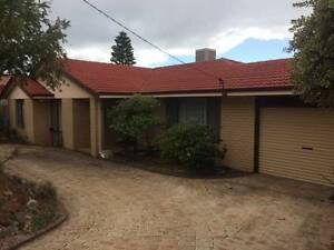 House for Rent SAMSON near HILTON COOLBELLUP NORTH LAKE BIBRA Samson Fremantle Area Preview