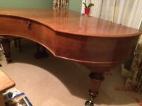 "Grand Piano, Bechstein 6'6"", model B, Circa 1900 in Rosewood finish."
