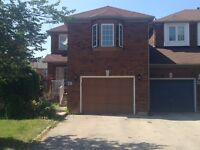 Beautiful Basement Apartment in Brampton