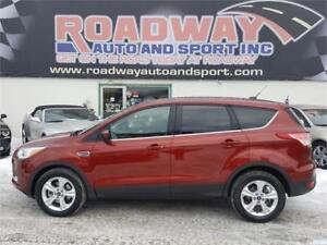 2015 Ford Escape SE - PST PAID
