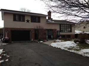 SPACIOUS FAMILY HOME IN INGLESIDE!