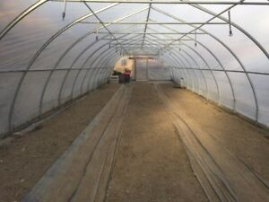 Greenhouse for Rent