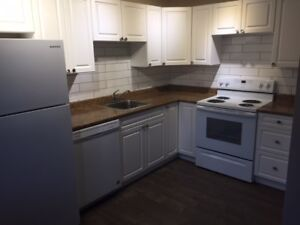 1 Bedroom, Newly Renovated, Heat & Hot Water Included