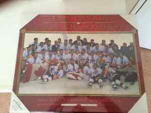 Collectors Edition -- Hockey Champions