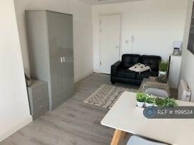Studio flat in St. Marys Road, Garston, Liverpool, L19 (#1199524)