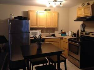 BEDROOM AVAILABLE IN NORTH END APARTMENT - NOV 1st