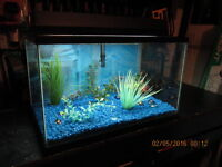 10 gallon fish tank with all supplies